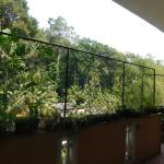 Green Woods Guest House Photo