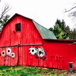 Red painted barn