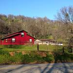 Homestead Cottages Foto