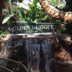 Foto de Golden Nugget Casino Laughlin