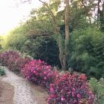 Hacienda Las Nubes Photo