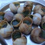 Escargot (Snails)