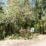 Camino de acceso al Mallín Ahogado