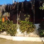 Photo de Latin Hostel Taganga