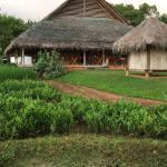 Aliya Resort & Spa Foto