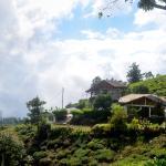 Hill Safari Eco Lodge Ohiya Photo