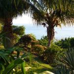 Vue panoramique au départ de la terrasse du bungalow ''Gwada''