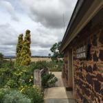 Coriole Winery