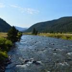 Riverside view on Gallatin River