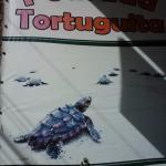 Photo of Pousada Tortuguita