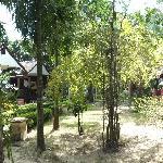 Foto di New Lapaz Villa