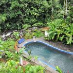 Beautiful pool near the jungle