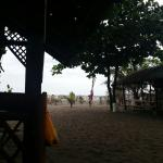 Foto de Shorebirds Beach Resort