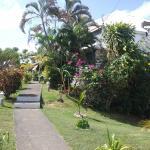 très joli jardin