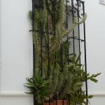 Окно, занявшее призовое место в конкурсе фасадов)