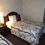 BEST WESTERN PLUS Wynwood Hotel & Suites Foto