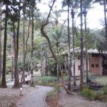 Chalé na área verde