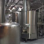 fermentation vats