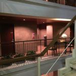8階の通路から撮影