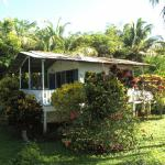 the cottage with the veranda