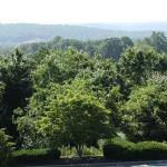 Beautiful views of Blue Ridge Mountains from your guest room