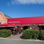 Hippopotamus Toulouse Roques