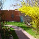 Springtime at Hacienda Vargas