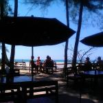 Lunch time under the trees...in the shade at the beach!