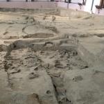 Photo of Xi'an Banpo Museum
