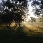 Foto de Ramat Gan National Park