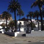 El bar está a la entrada del pueblo, junto a esta plaza adornada con palmeras