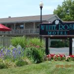 Welcome to the White Rose Motel