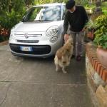 A friendly welcome from Elly, Villa Caterina's lovely dog!
