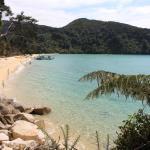 Abel Tasman Aqua Taxi - Day Tours Foto