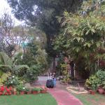 Garden outside the hotel