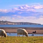 Martleaves Farm Campsite on the world famous Jurassic Coast in Dorset