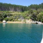 Lochmara Lodge Marlborough Sounds Wildlife Recovery Centre Foto