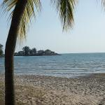 Coconut Grove - View from seats