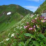 富良野岳で感動しました
