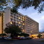 Jacksonville Marriott Foto