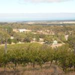 Ausblick über das Weingut bis zum Meer