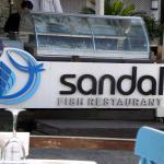 صورة فوتوغرافية لـ Sandal