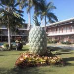 The Sabin landmark
