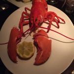 1st Lobster Foto
