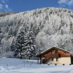 Photo of Camping & Chalet Presanella