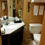 BEST WESTERN PLUS Portsmouth-Chesapeake Hotel Foto