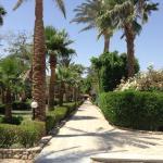 Photo de Giftun Azur Resort
