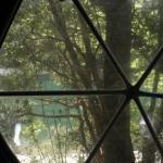 Vista desde la ventana del domo, a orillas del río Arrayanes