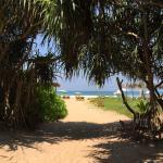 Palm Beach Inn and Sea Shells Cabanas Foto