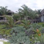 The grounds of Los Lirios, looking toward a cabana